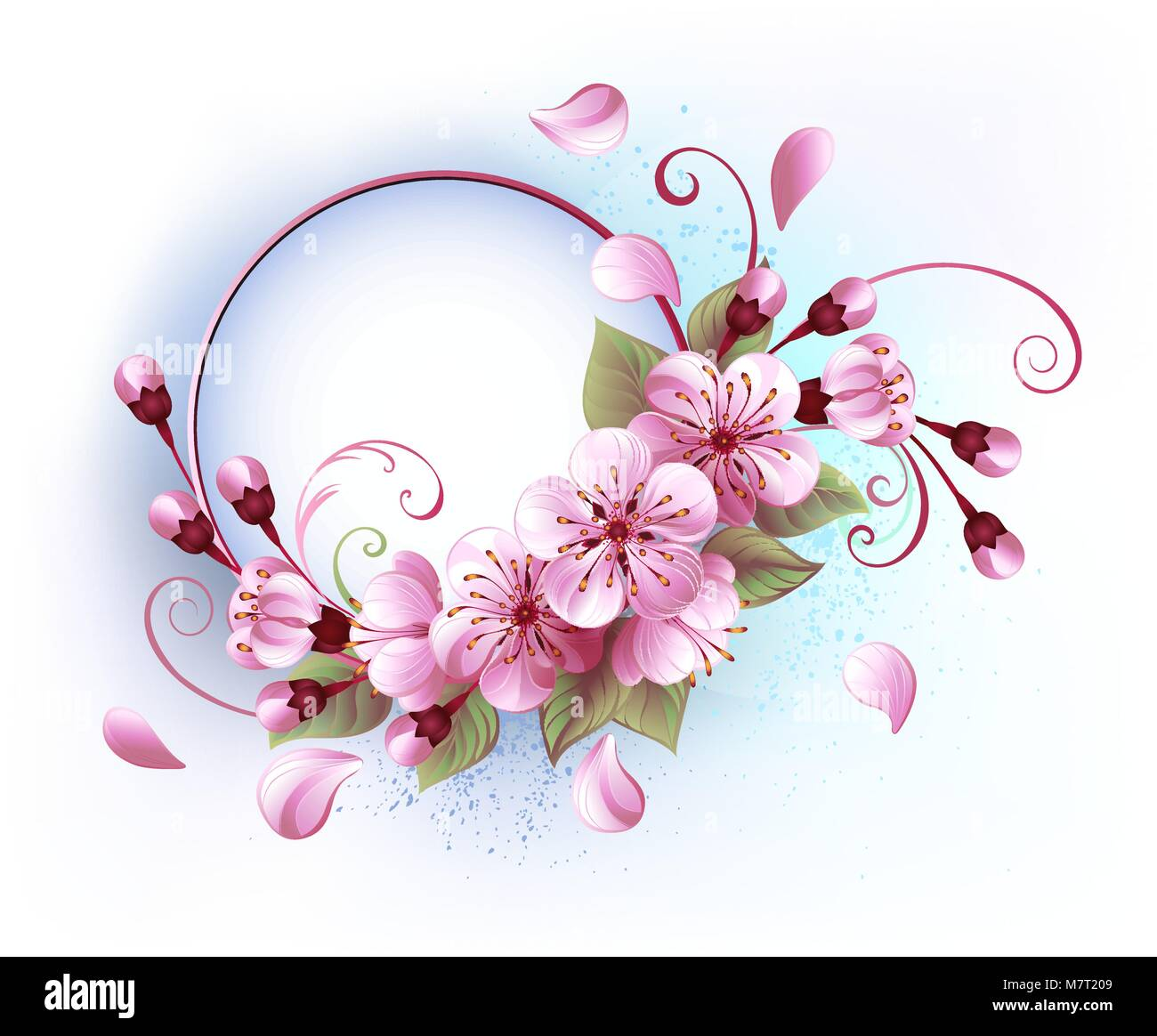 Round Banner With Blooming Pink Sakura Blossom On White Background