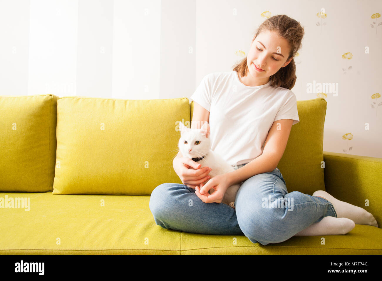 home atmosphere with the cat - Stock Image