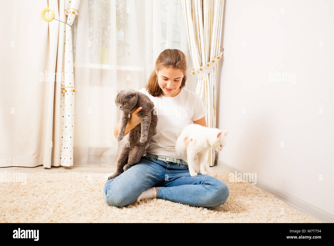 pretty girl is playing with her cats - Stock Image