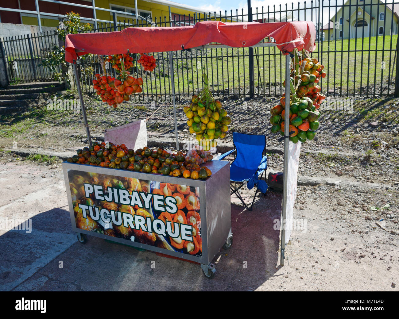 Fruit stand selling pejibayes, the fruit of Bactris dasipaes or the peach palm fruit. Costa Rica - Stock Image