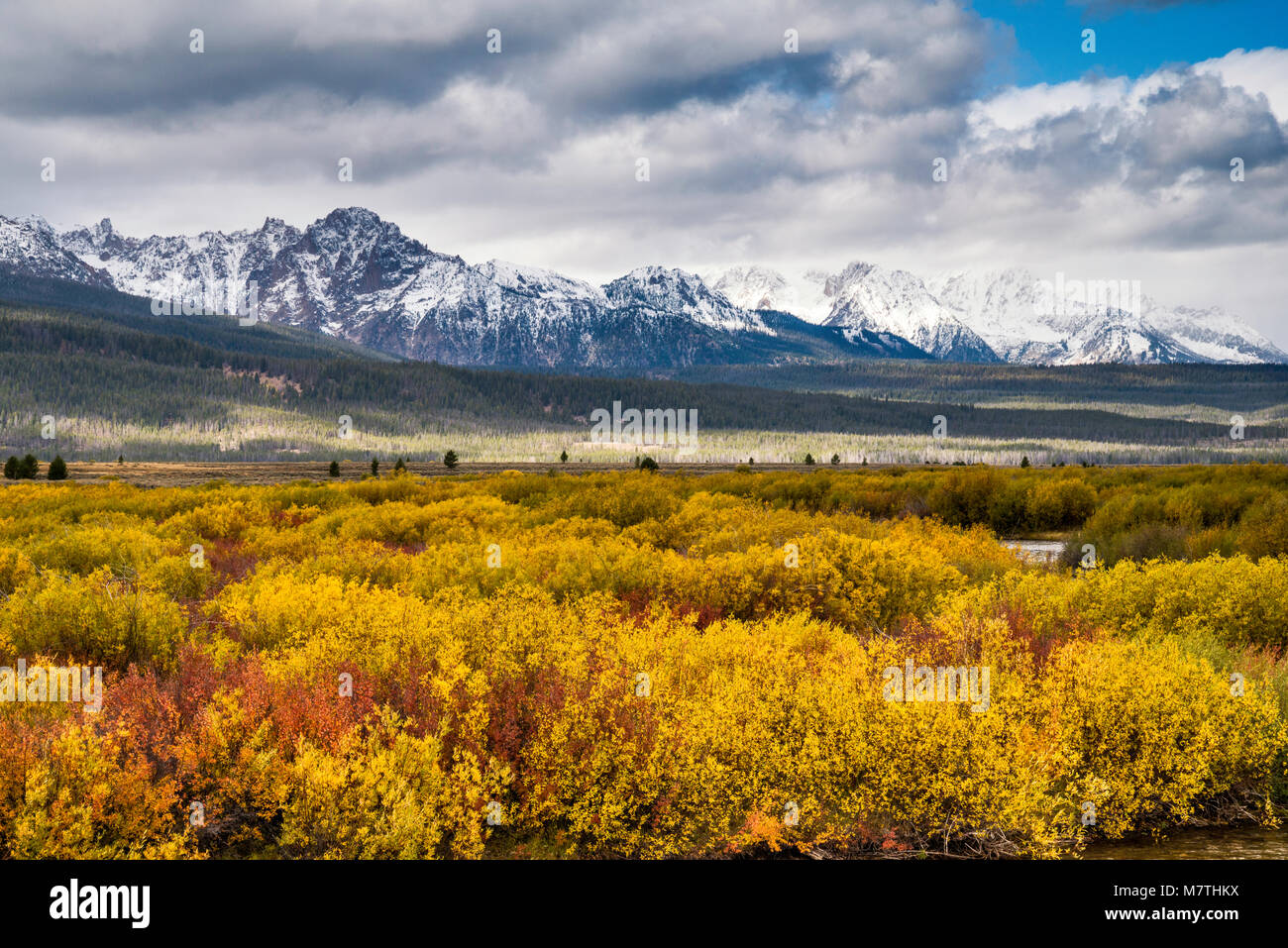 Sawtooth Mountains under snow over Sawtooth Valley in fall foliage, view from Sawtooth Scenic Byway, Sawtooth National - Stock Image