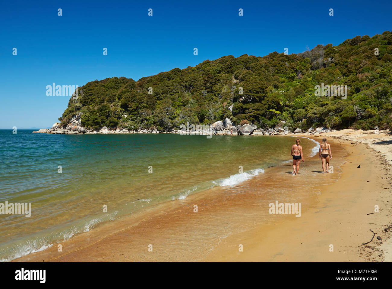People walking along beach at Te Pukatea Bay, Abel Tasman National Park, Nelson Region, South Island, New Zealand - Stock Image