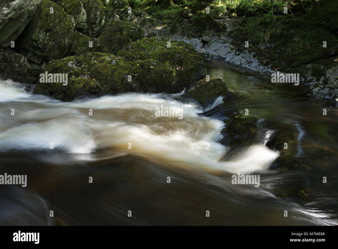 Cascade in a small river near Betws-y-coed, Snowdonia, Wales Stock Photo