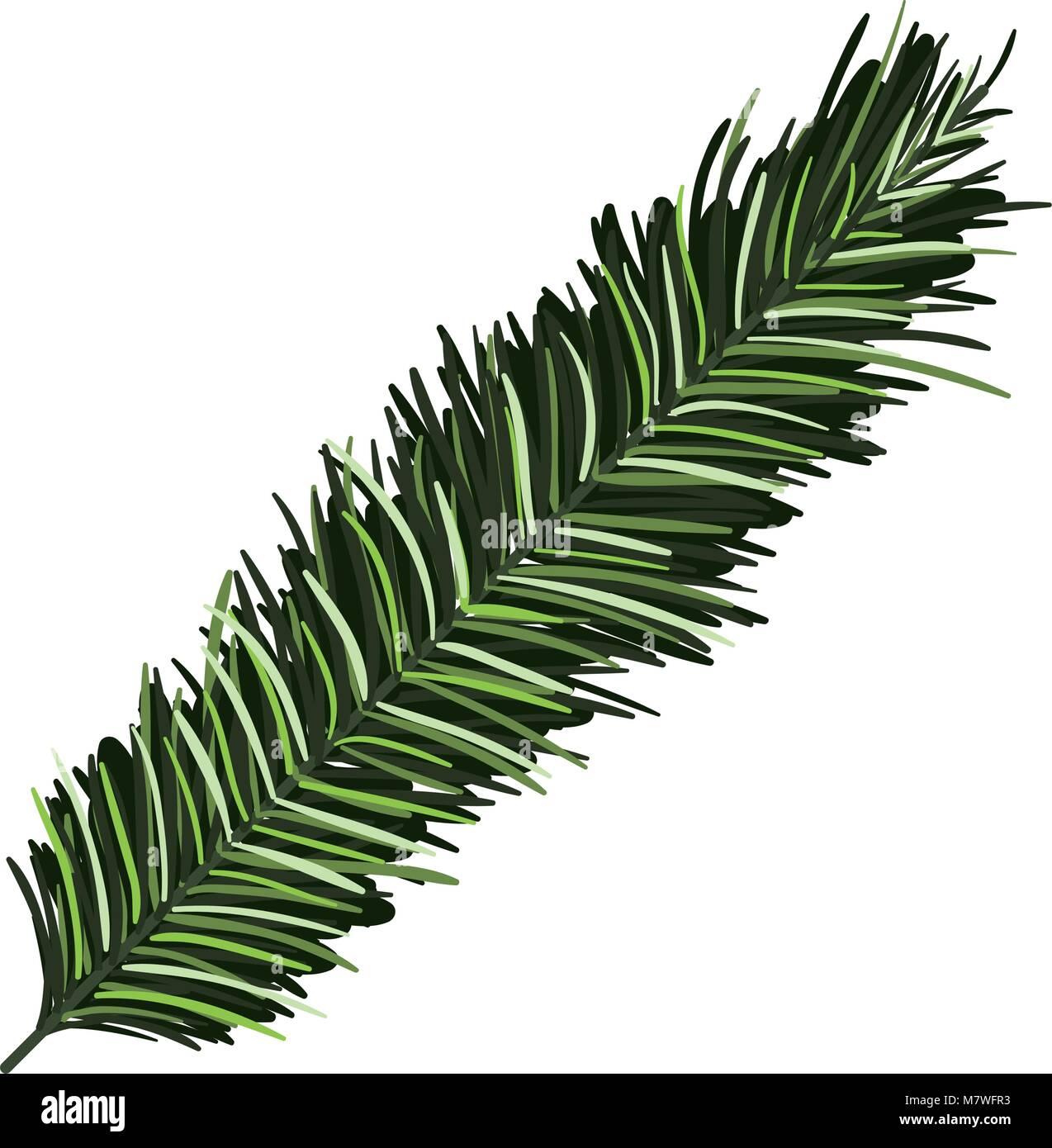 pine tree branche icon - Stock Vector