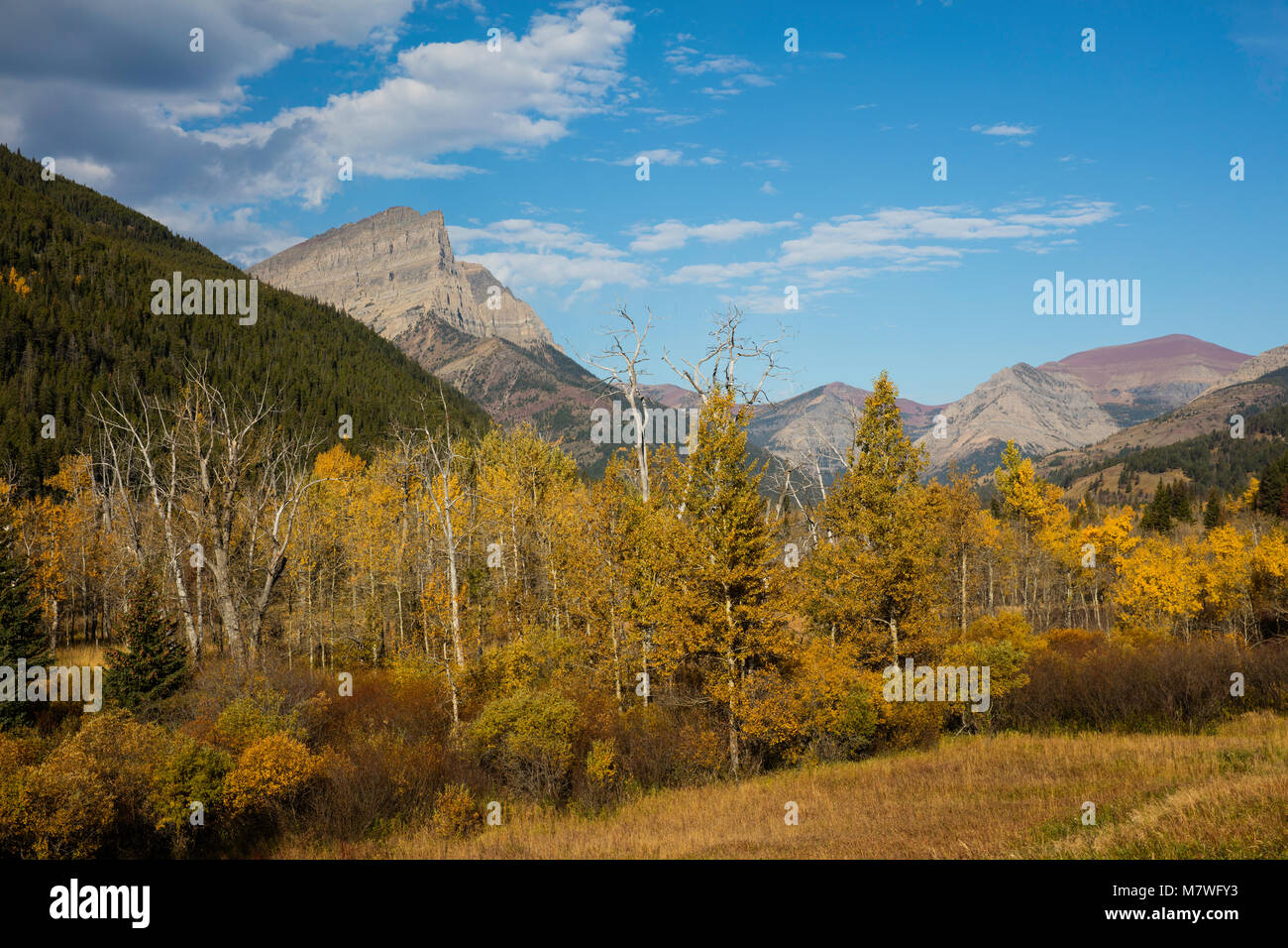 Mount Anderson (Anderson Peak) as seen from the Red Rock Parkway in autumn, Waterton Lakes National Park, Alberta, - Stock Image