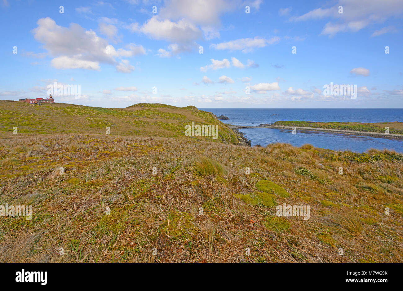 Lighthouse and Grassland at the end of the World on Cape Horn in Chile - Stock Image