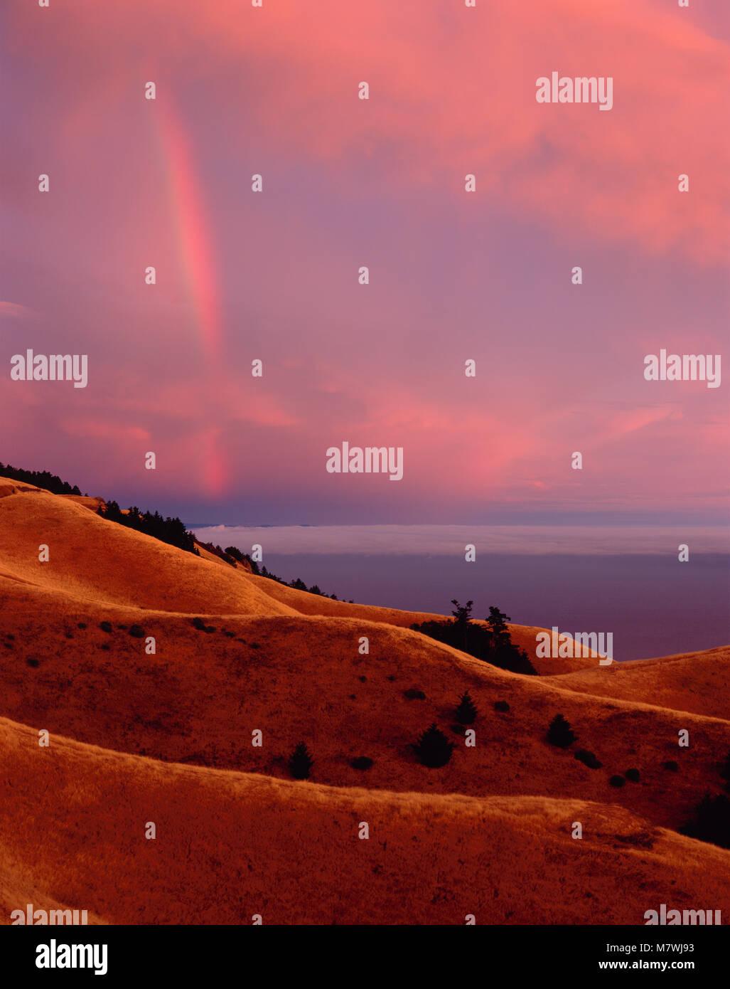 Rainbow, Bolinas Ridge, Mount Tamalpais State Park, Golden Gate National Recreation Area, Marin County, California - Stock Image
