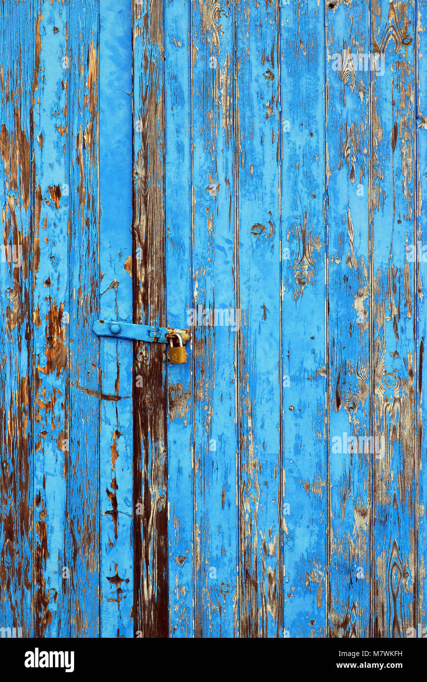 weathered wood planks painted blue with peeling and flaking paint showing some wood grain from a locked garage shed - Stock Image