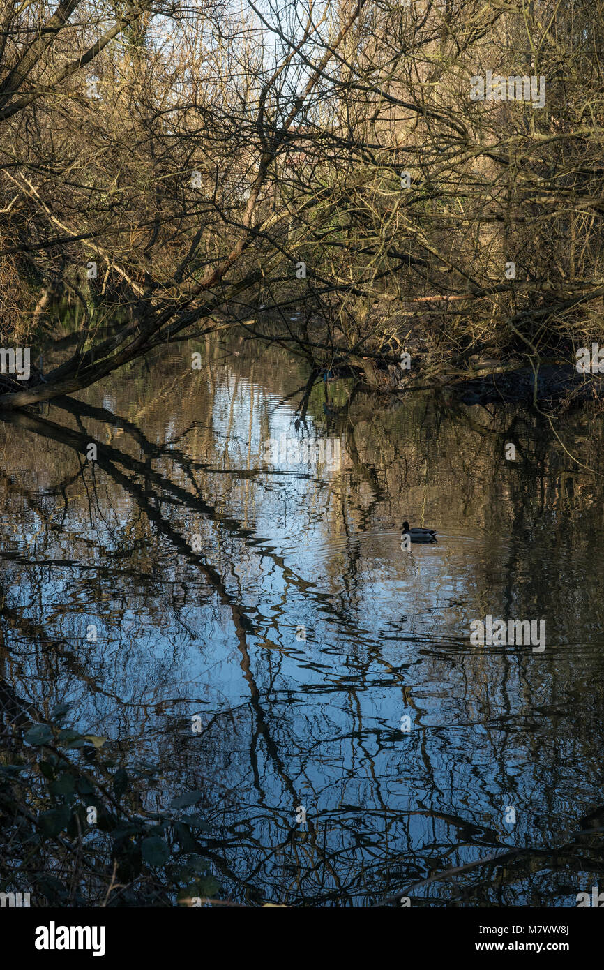 A view of the river Brent in West London. Photo date: Sunday, February 25, 2018. Photo: Alamy - Stock Image