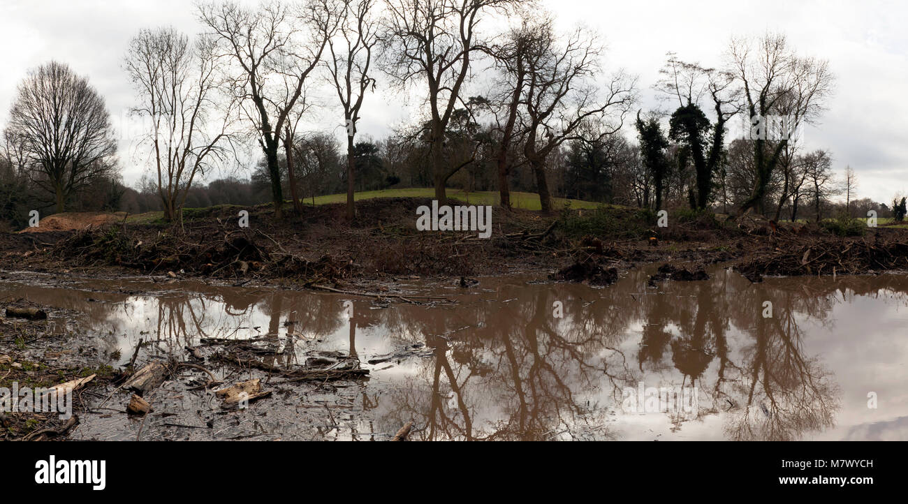 Lewisham Council  are restoring an 18th century lake in Beckenham Place Park.  One acre of mature woodland was removed - Stock Image
