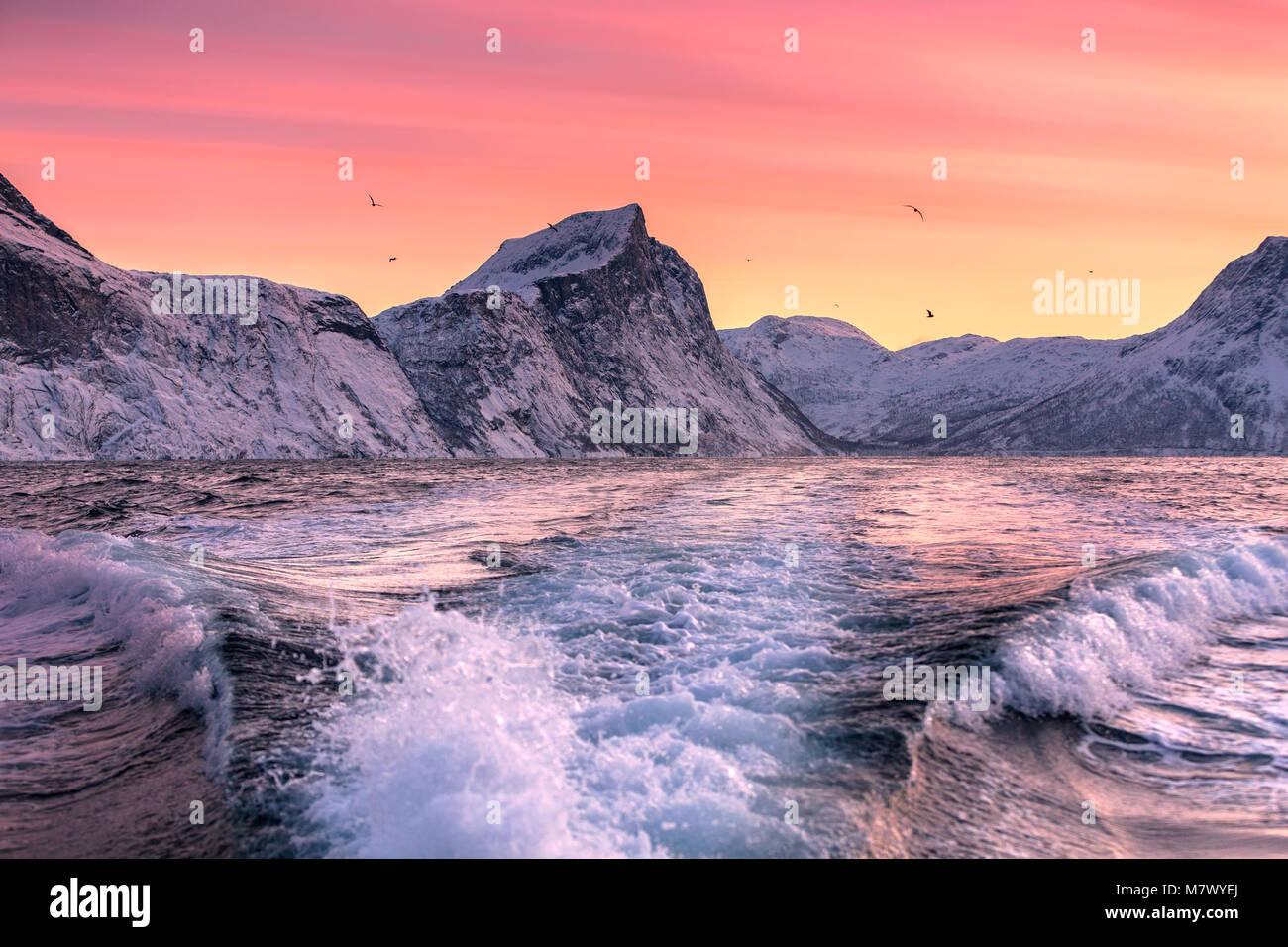 Norwegian's fjord, Mefjorvaer village, Senja island, Norway - Stock Image