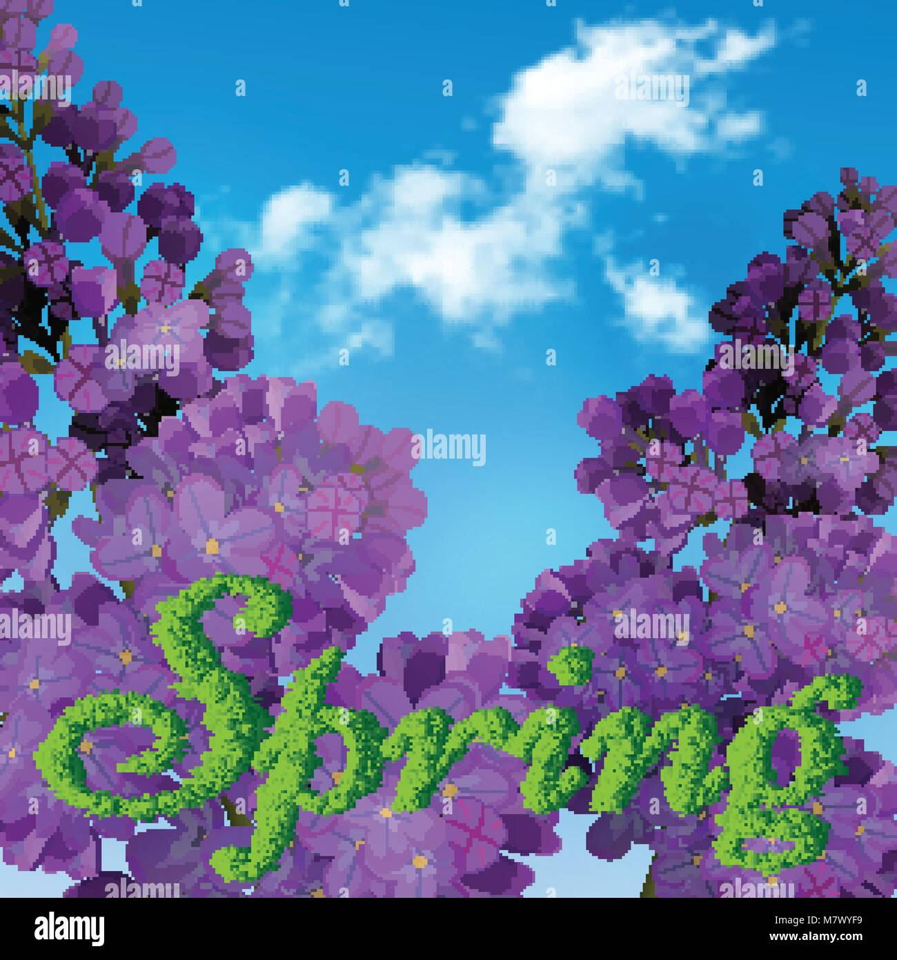 Blooming violet lilac flowers - floral background with blue-sky and ...