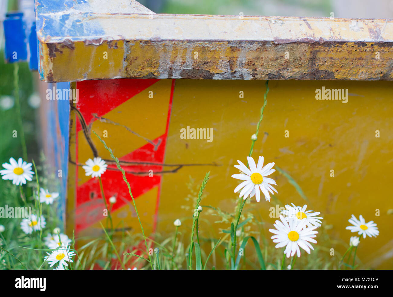 bright yellow steel dumpster with daisy signifying urban renewal - Stock Image