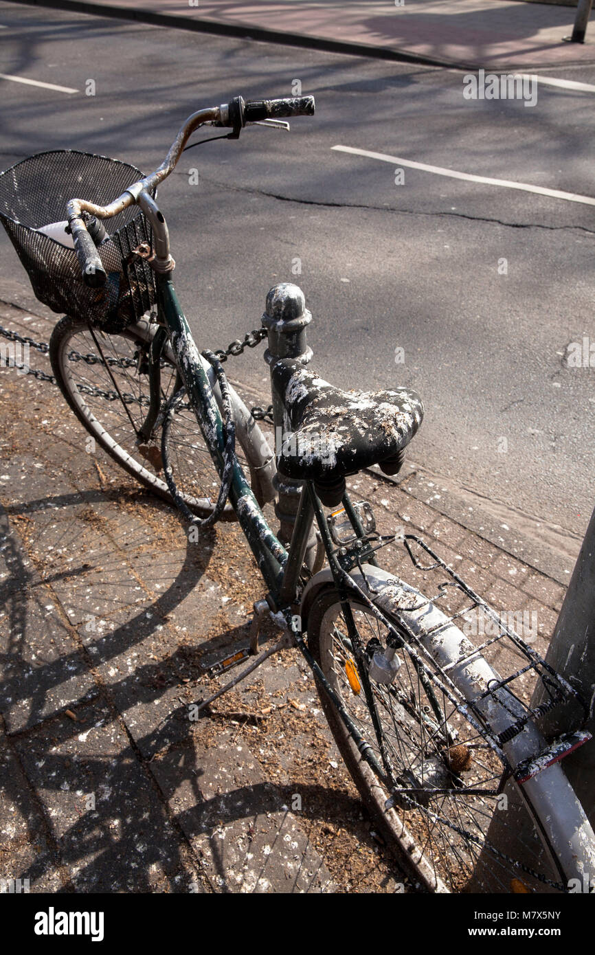 Germany, Cologne, with bird droppings covered bicycle in the city.  Deutschland, Koeln, mit Vogelkot verdreckte - Stock Image