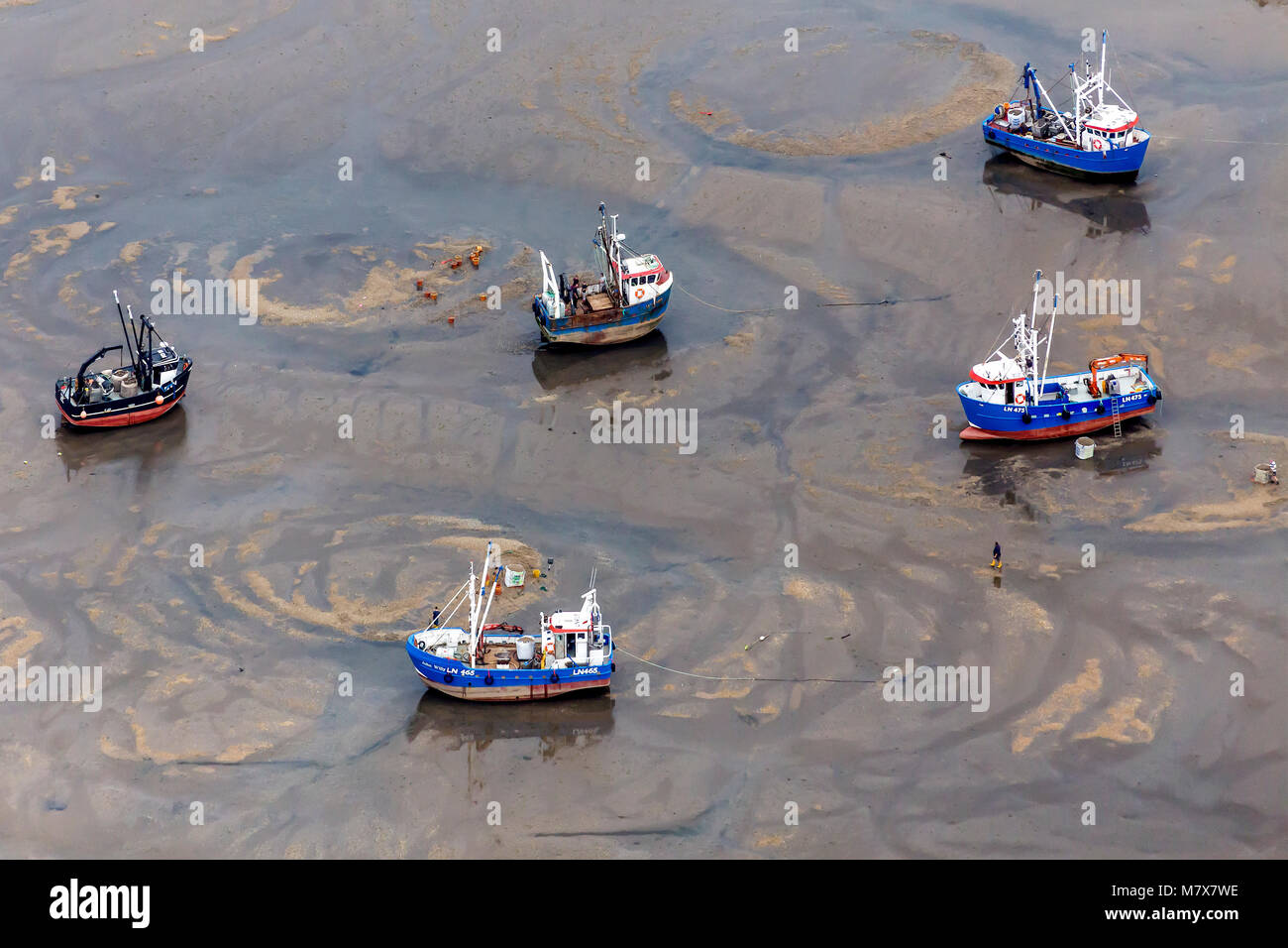 Controversial methods of Cockle fishing. Cockle boats at low tide in the Wash, showing the circles they produce - Stock Image