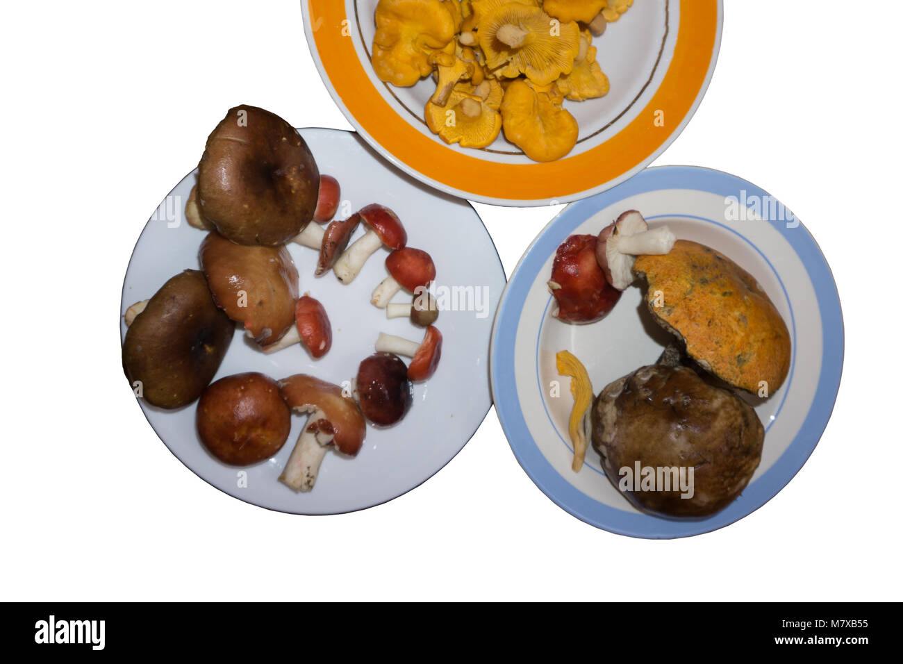 Fresh mushrooms in a tray on a white background, with clipping paths insulator - Stock Image