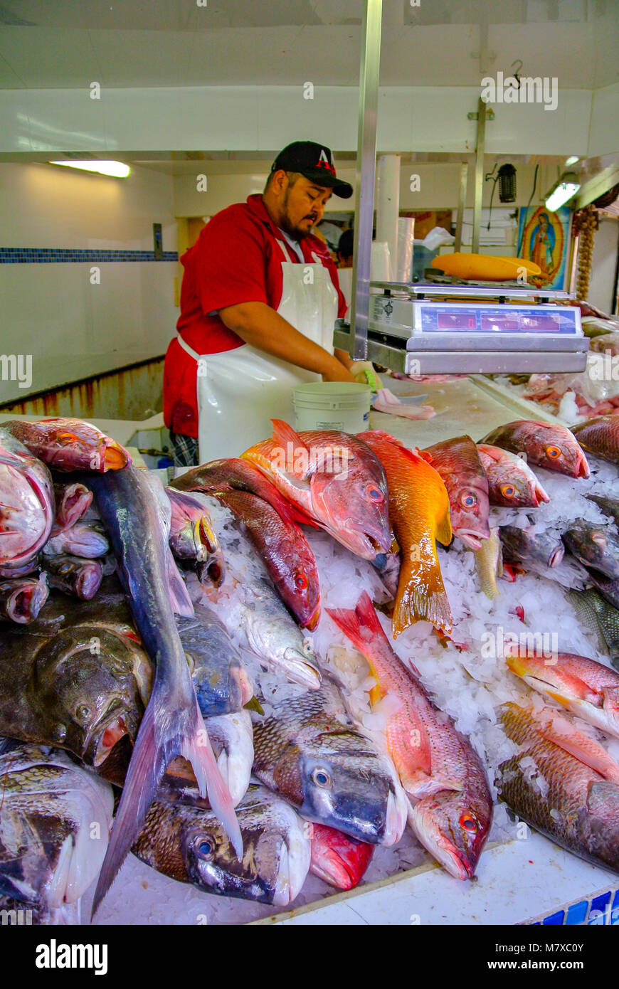 Mexican seller at Fish market in Puerto Vallarta, Jalisco, Mexico - Stock Image