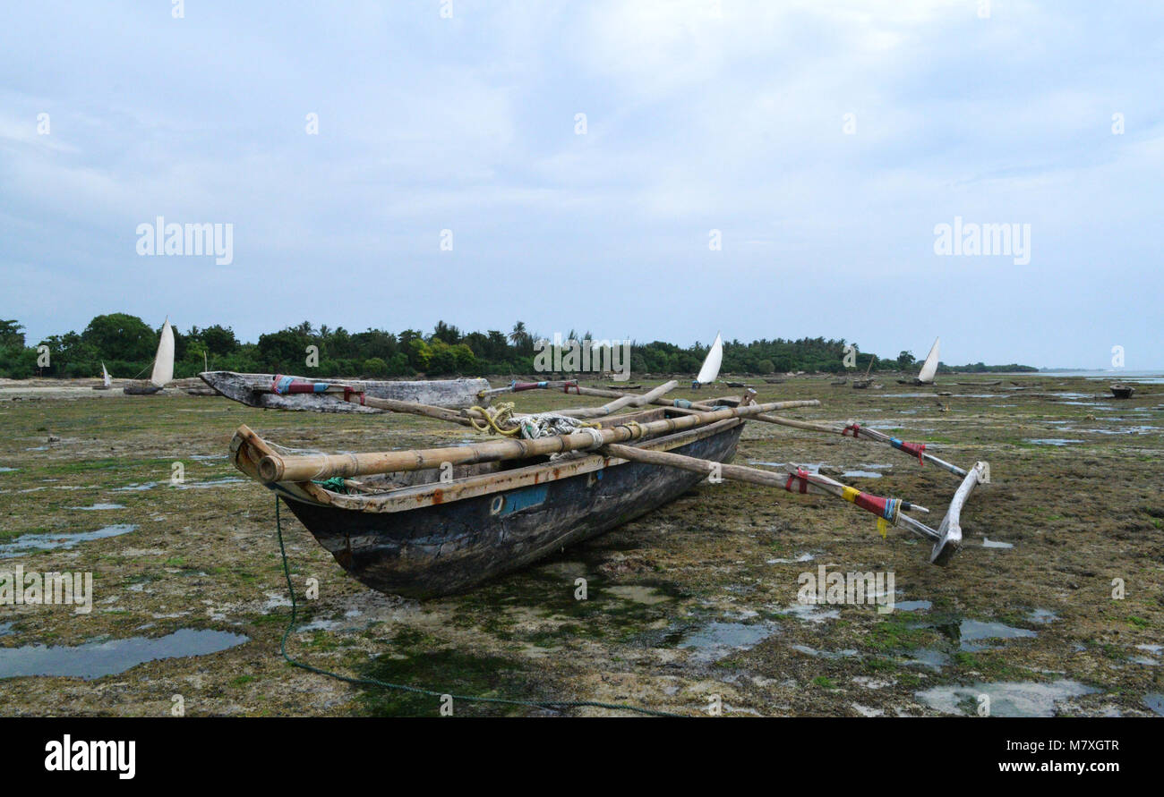 Traditional out-rigged tanzanian boat (ngalawa) on the beach during low tide. - Stock Image