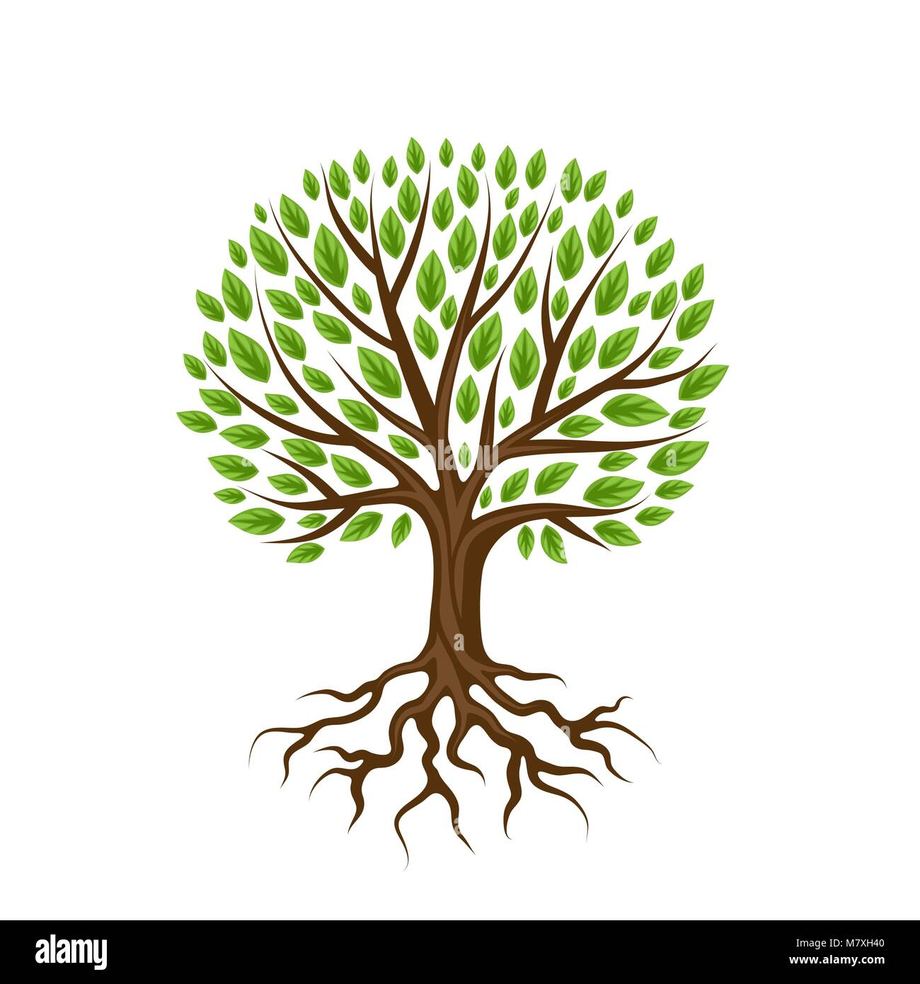 Tree Roots Background Ecology Vector Stock Photos & Tree Roots ...