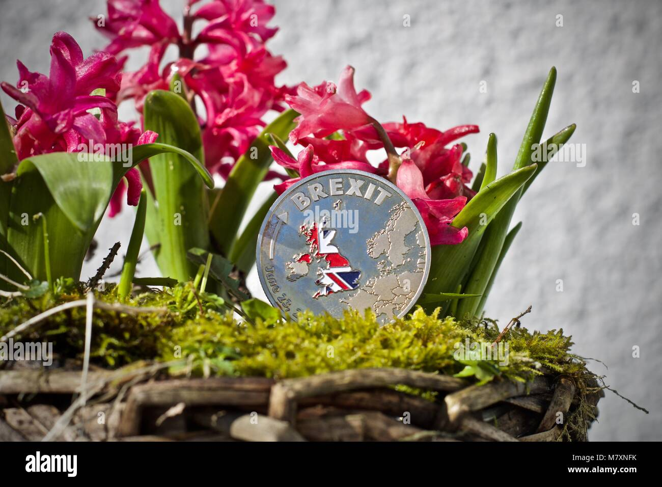 Physical metal brexit coin with a british flag on the front. Stock Photo