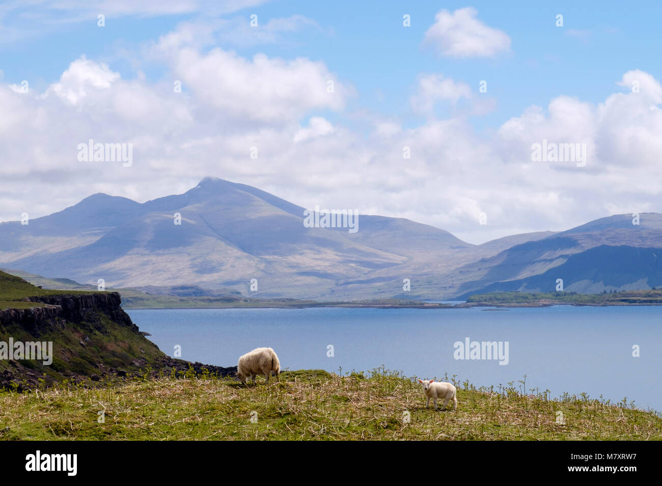 View across across Loch Tuath to Ben More mountain on west coast. Kilninian Isle of Mull Argyll and Bute Inner Hebrides - Stock Image