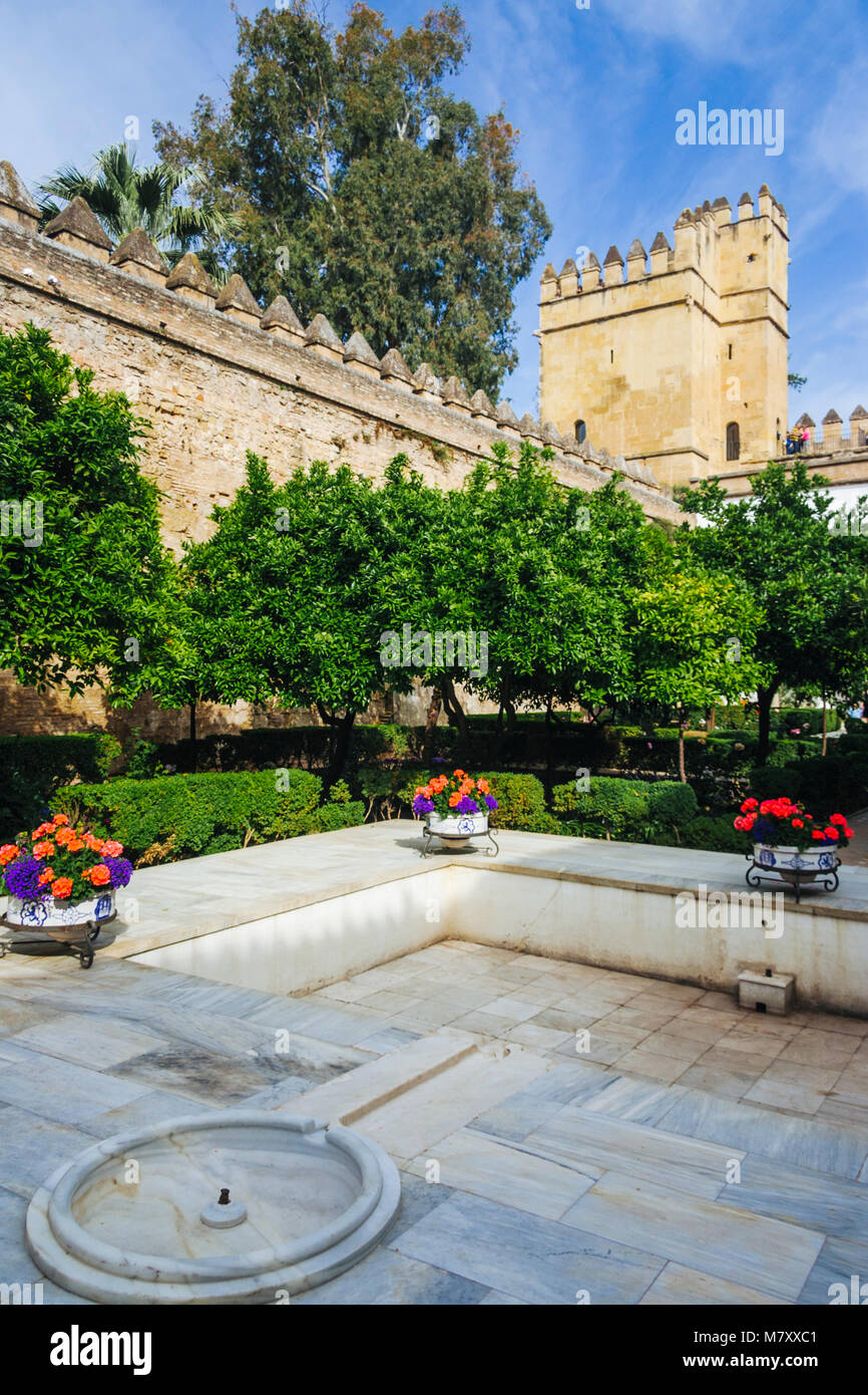 Cordoba, Andalusia, Spain : Courtyard at the Alcazar de los Reyes Cristianos (Castle of the Christian Monarchs) - Stock Image