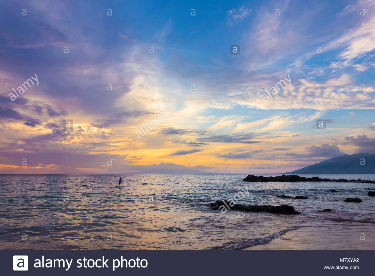 Paddleboarding and tropical sunset at Kamaole Beach Park 3 Pacific Ocean on the island of Maui in the state of Hawaii - Stock Image