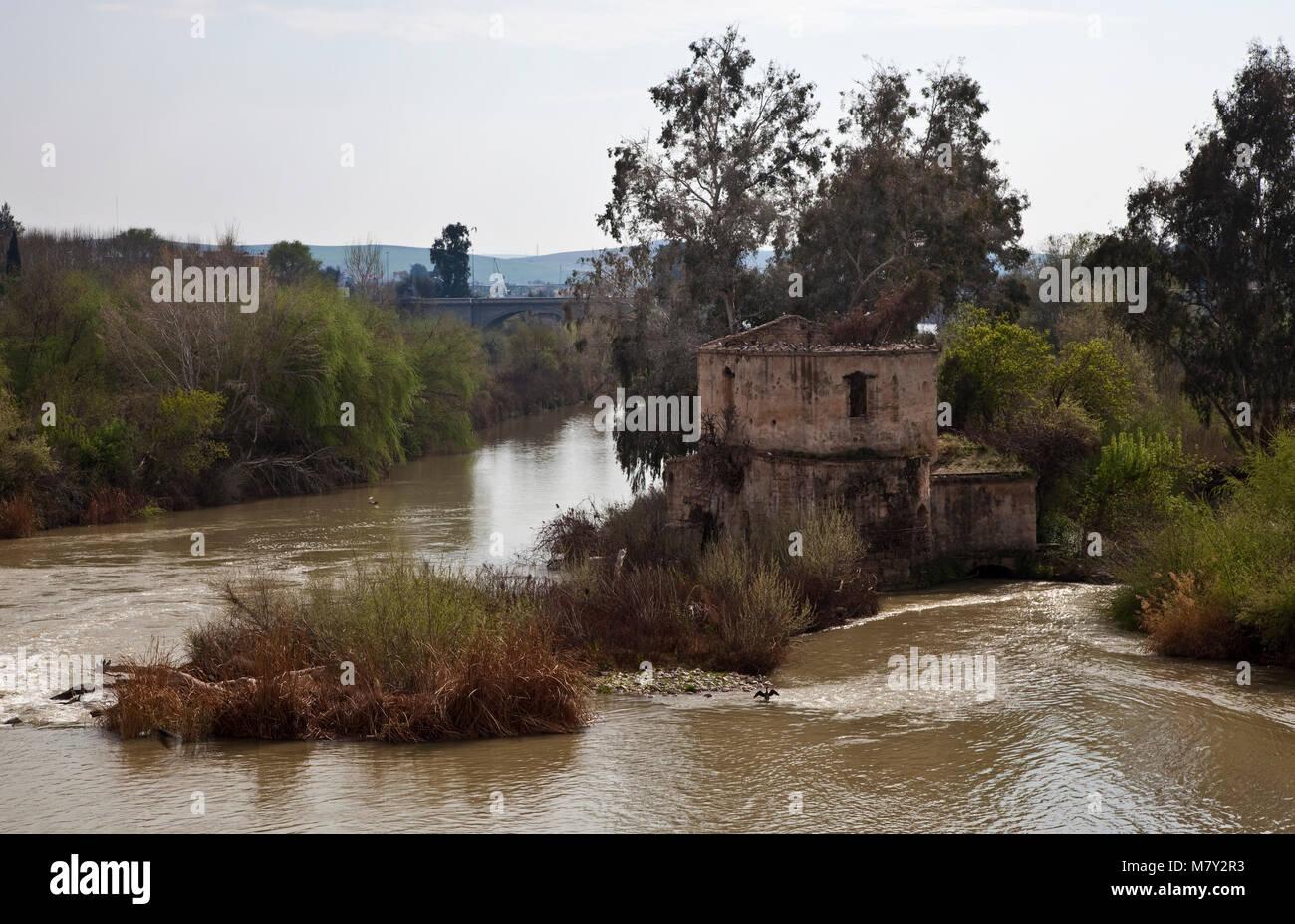 Cordoba, Ruine einer Flußmühle. Ruine einer arabischen Flußmühle im Fluß Guadalquivir - Stock Image