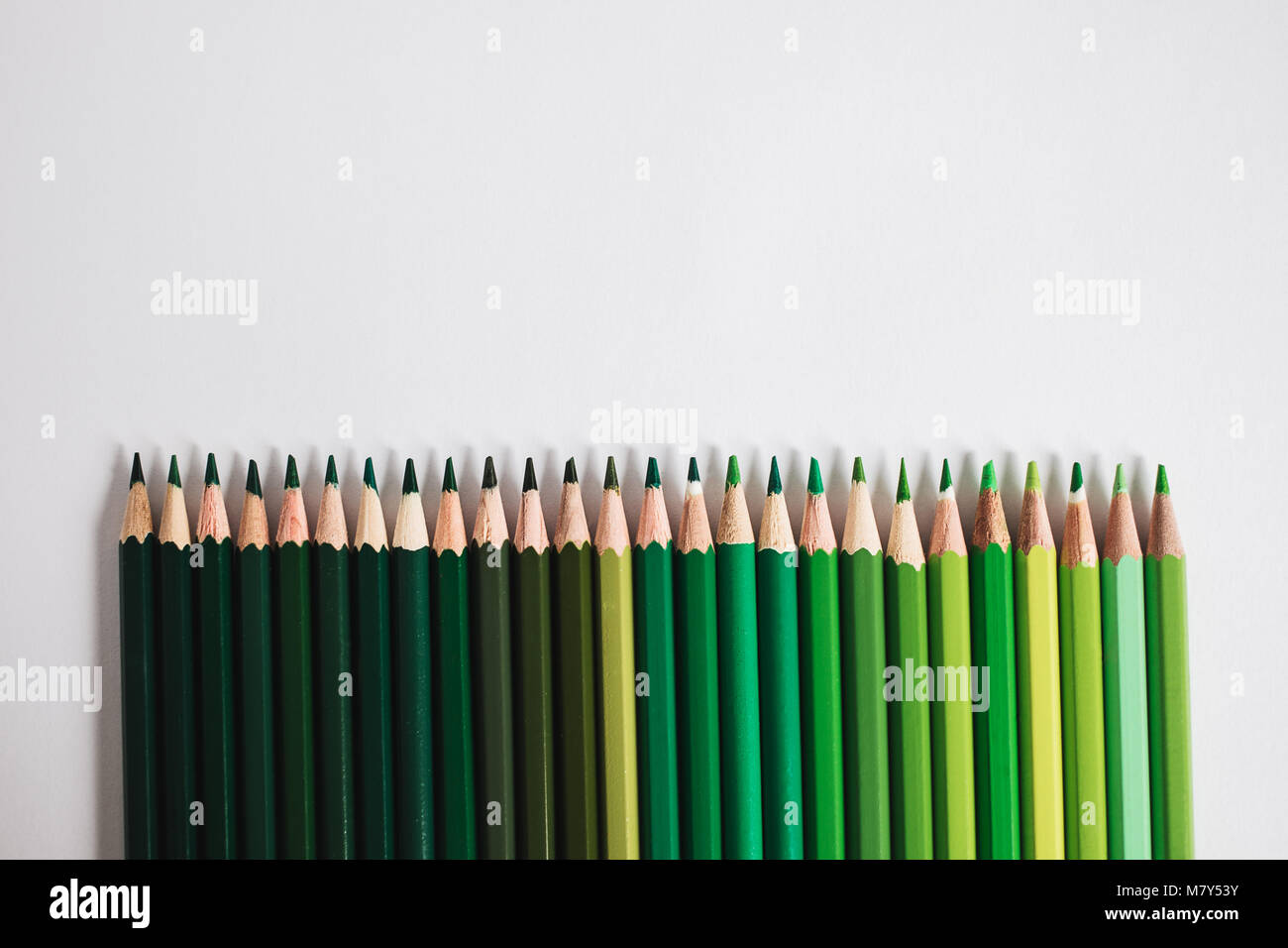Row of green coloured pencils lying one to another in a line stock