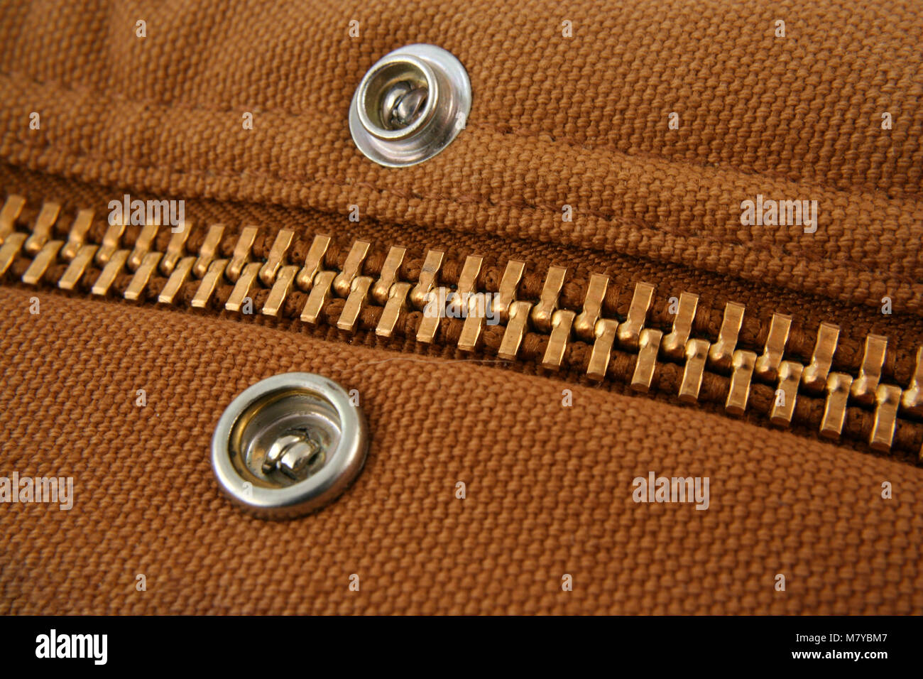 A Large gold zipper macro with snaps - Stock Image