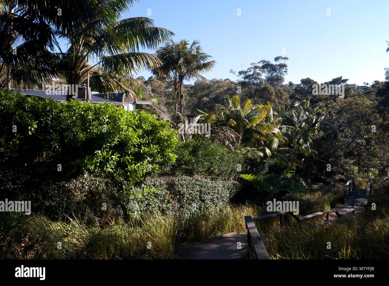 pathway headland park mosman sydney new south wales australia - Stock Image