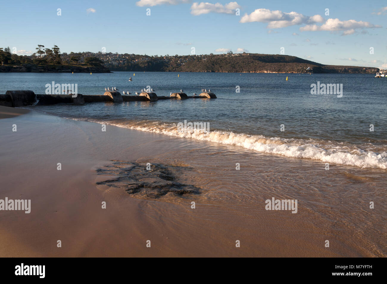 balmoral beach hunter bay headland park mosman sydney new south wales australia - Stock Image