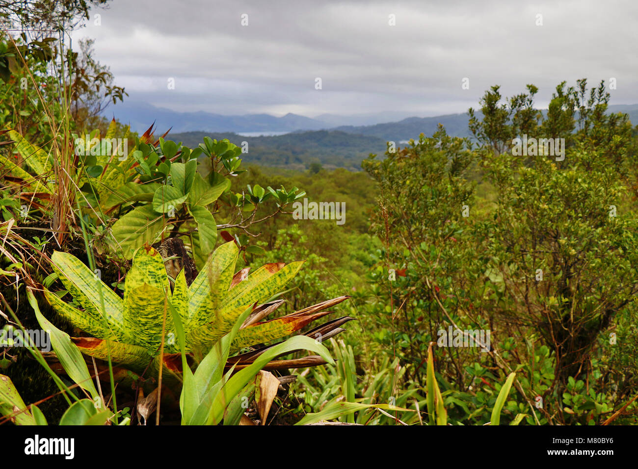 Volcanic landscape from the Arenal Volcano in Alajuela Province, Costa Rica - Stock Image