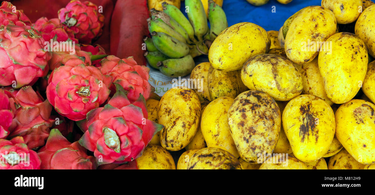 Mangoes and dragon fruits at the market stall in Chiang Mai, Thailand. - Stock Image