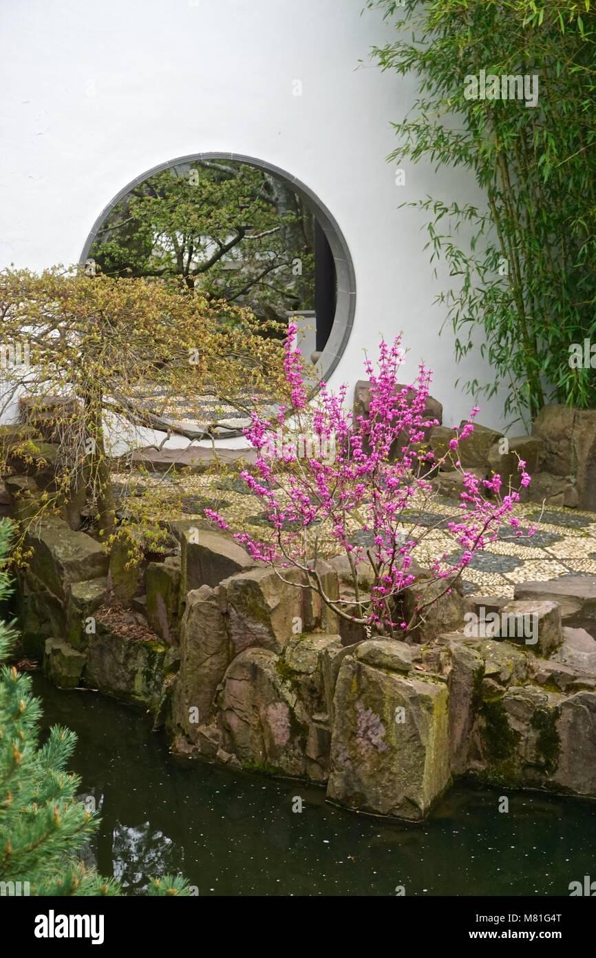 New York Chinese Scholars Garden Stock Photos & New York Chinese ...