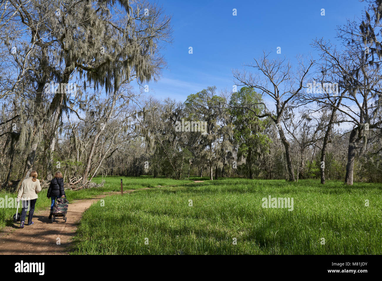 2 Persons walking on one of the many Nature trails that can be found at the Brazos Bend State Park in Texas. - Stock Image