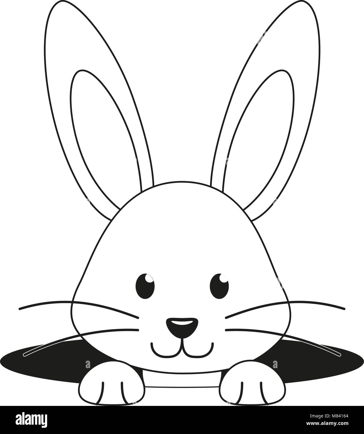 Line Drawing Of Rabbit Face : Outline hare stock photos images alamy