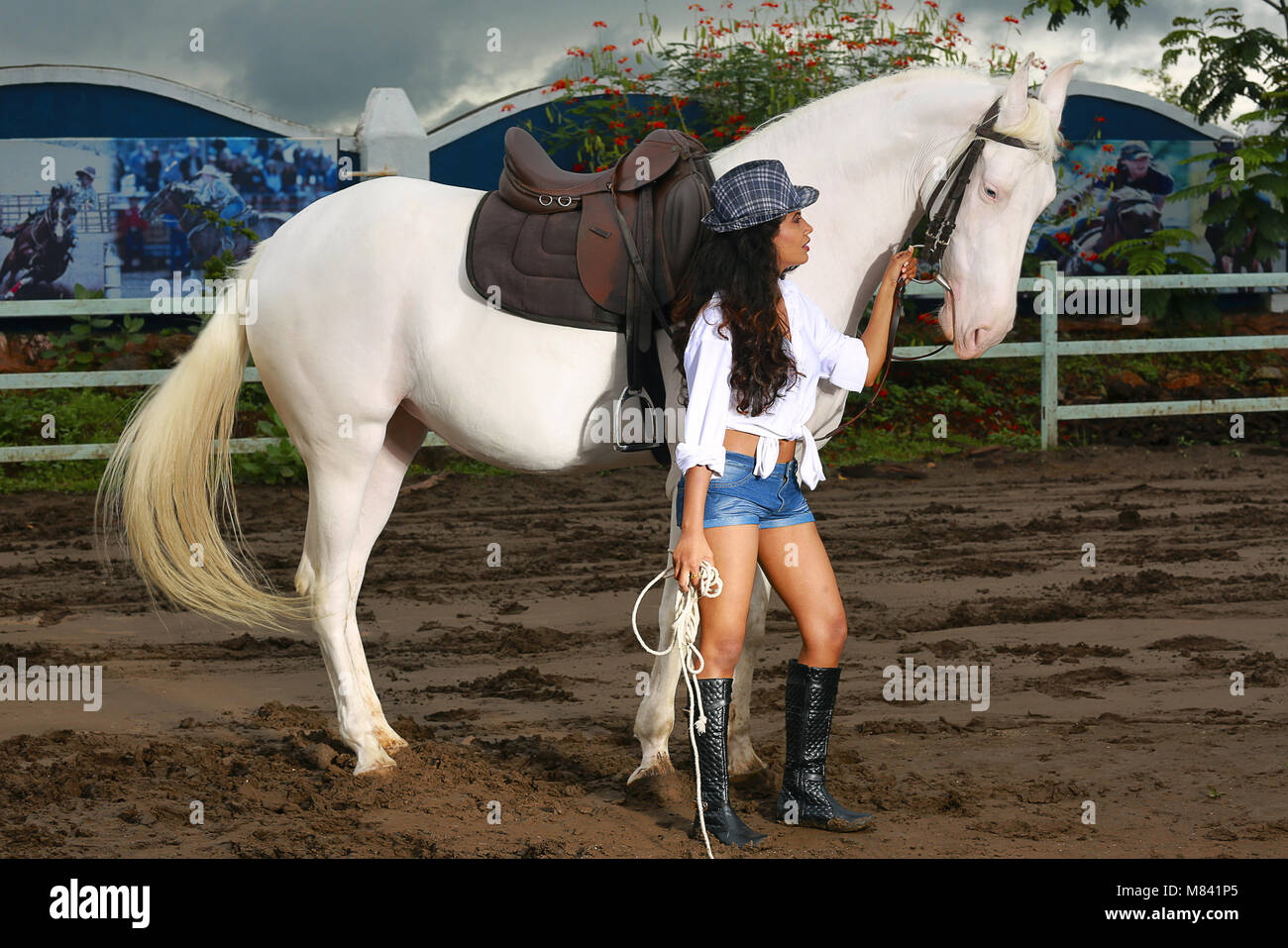 Girl with long hair wearing short pants with horse Stock Photo