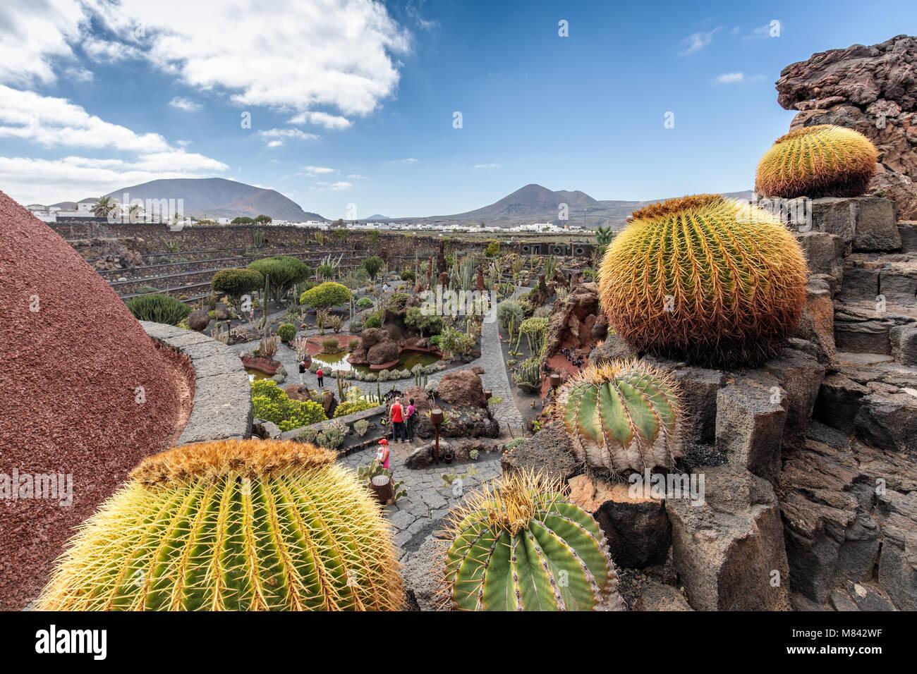 Cesar manrique cactus garden stock photos cesar manrique for Jardines con cactus