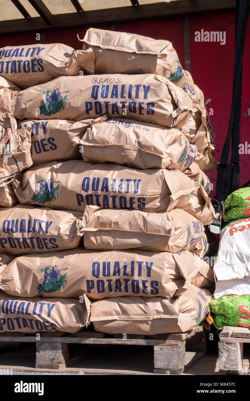 Sacks of potatoes stacked on a pallet ready for delivery - Stock Image