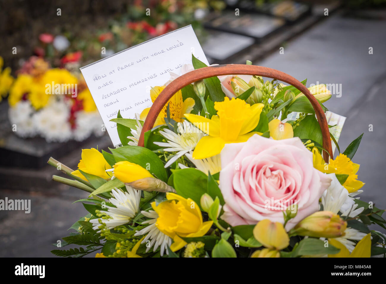 Sympathy flowers stock photos sympathy flowers stock images alamy funeral flowers at the graveside stock image izmirmasajfo