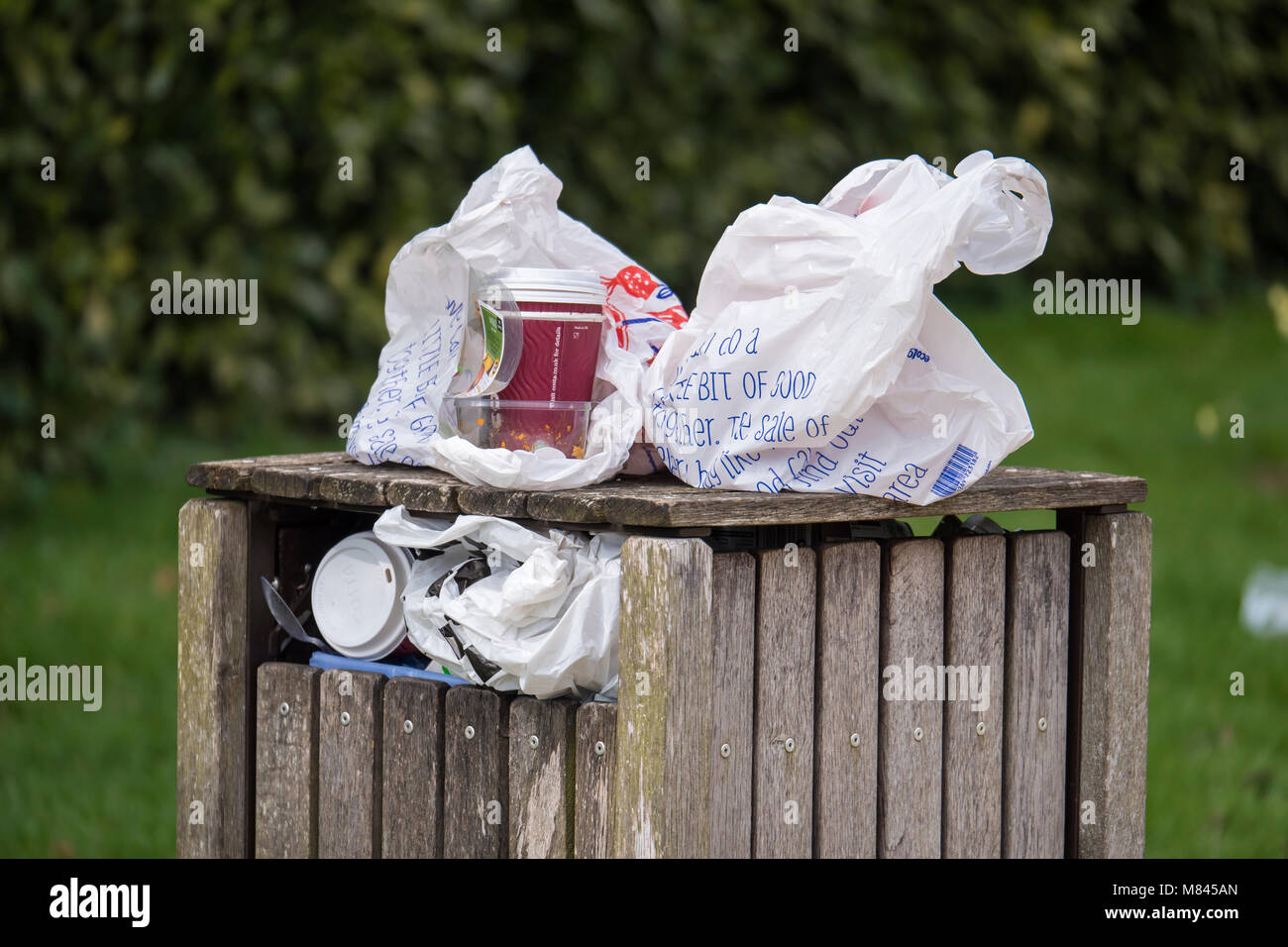 Overflowing Litter Bin - Stock Image