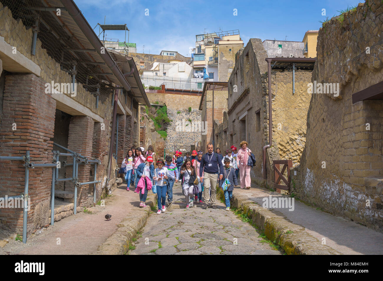 School trip Italy, a party of schoolchildren led by their teacher walk along an excavated Roman street in Herculaneum, - Stock Image