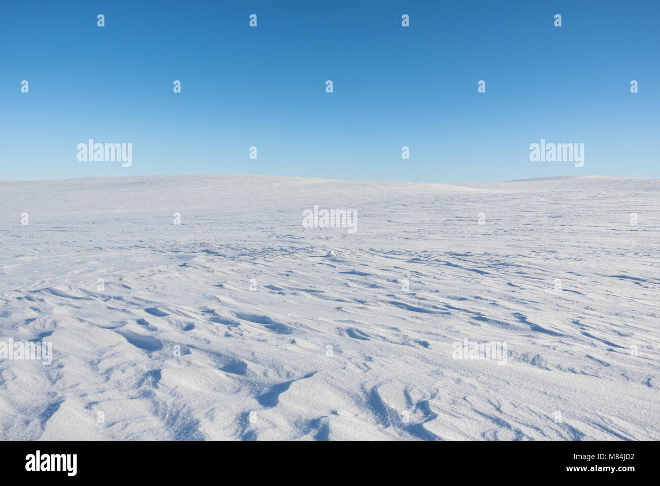 Finnmark. Sunny day at the flat mountain plateau Finnmarksvidda in Northern Norway. - Stock Image