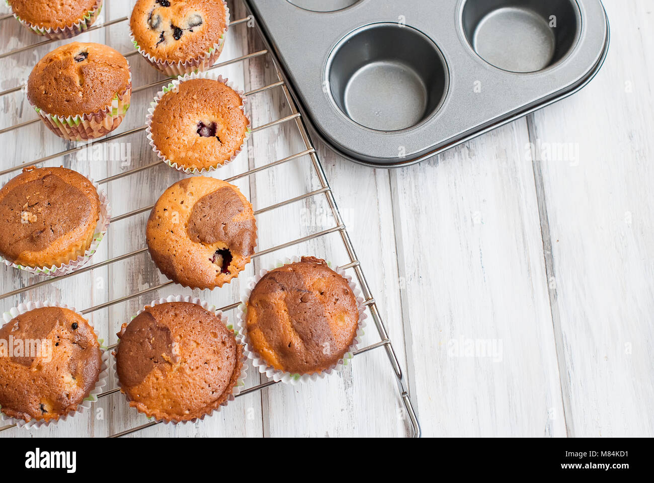 A row of chocolate and vanilla  homemade muffins on a white wooden background  bakery concept. - Stock Image