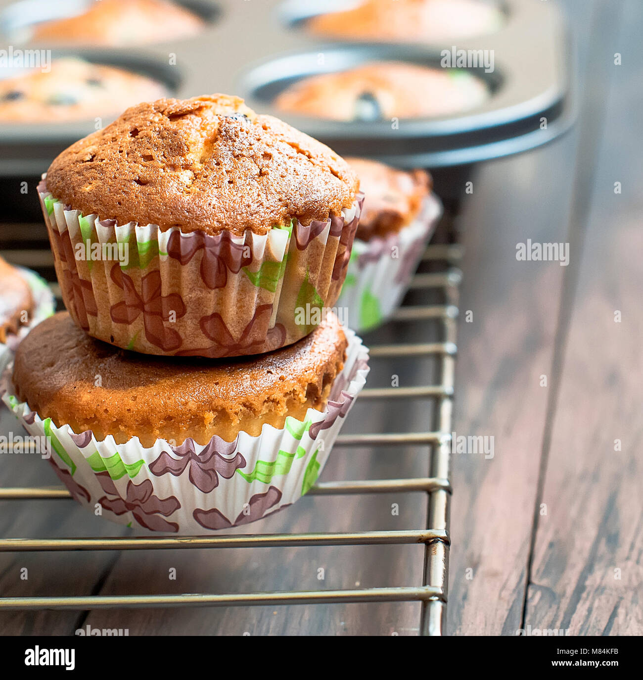 chocolate and vanilla  homemade muffins on a dark wooden background  bakery concept. - Stock Image