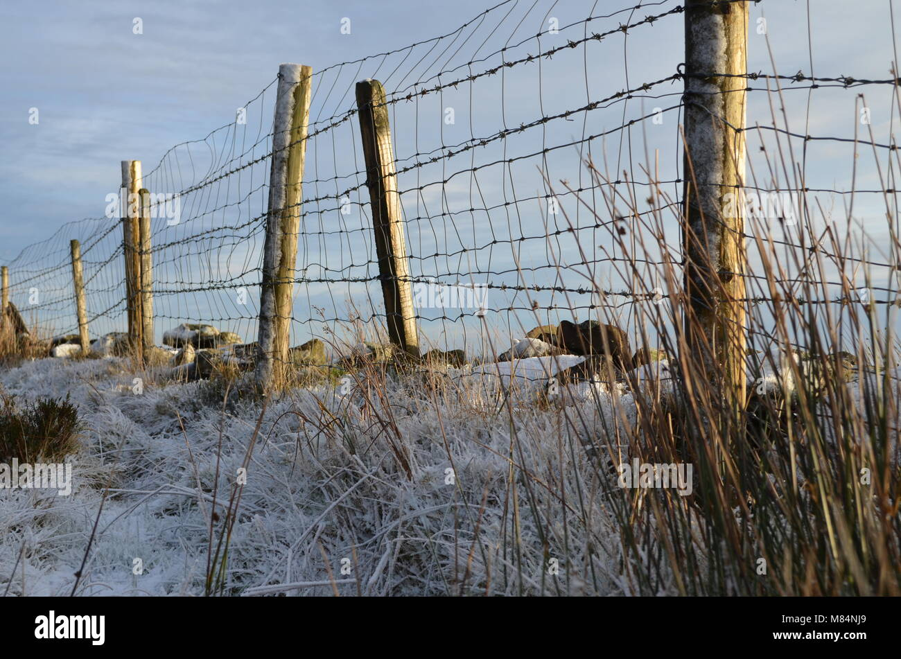Frosty Fences - Stock Image