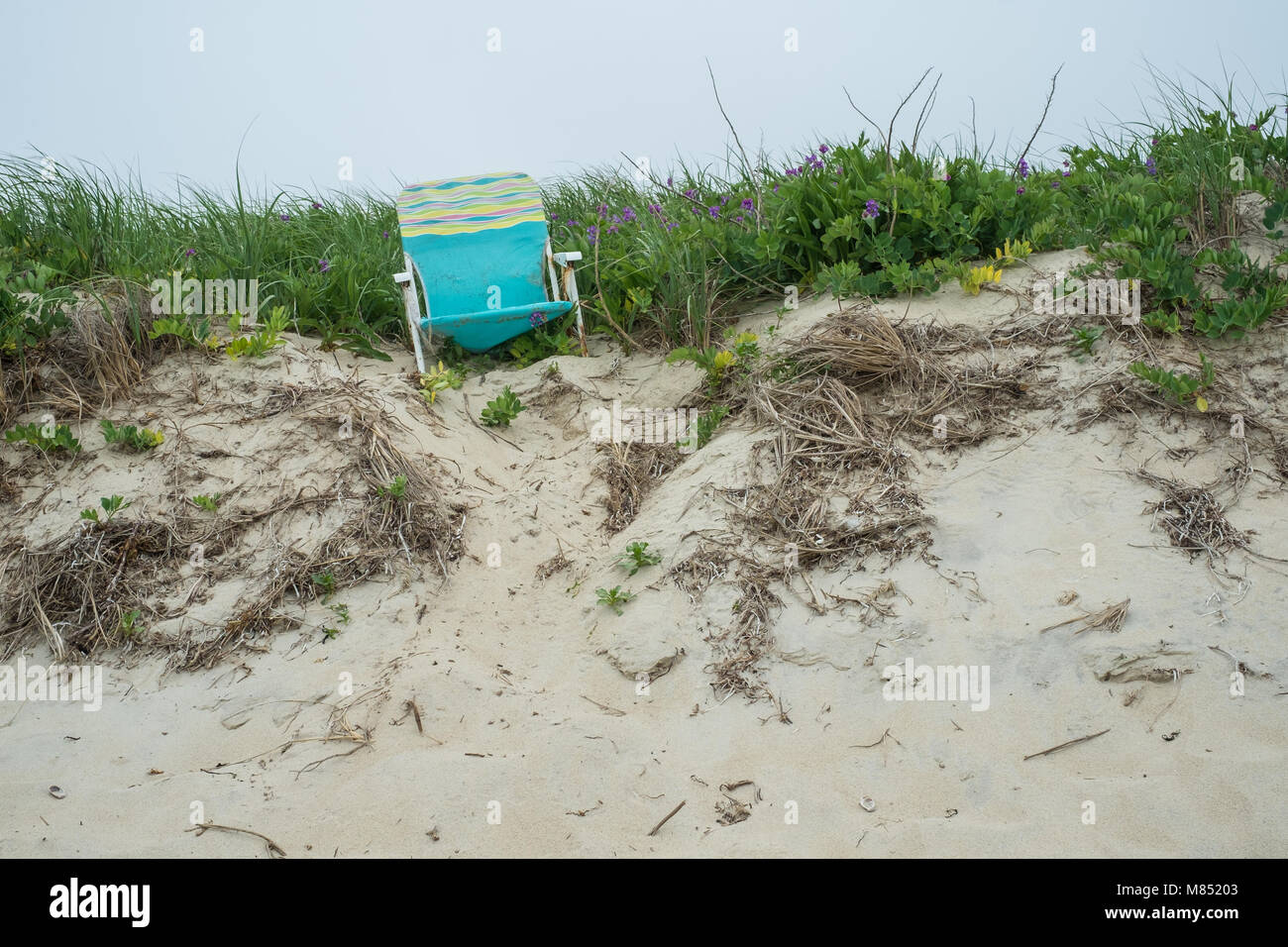 Scenes from the empty beaches of Nantucket Island on a foggy spring day. - Stock Image