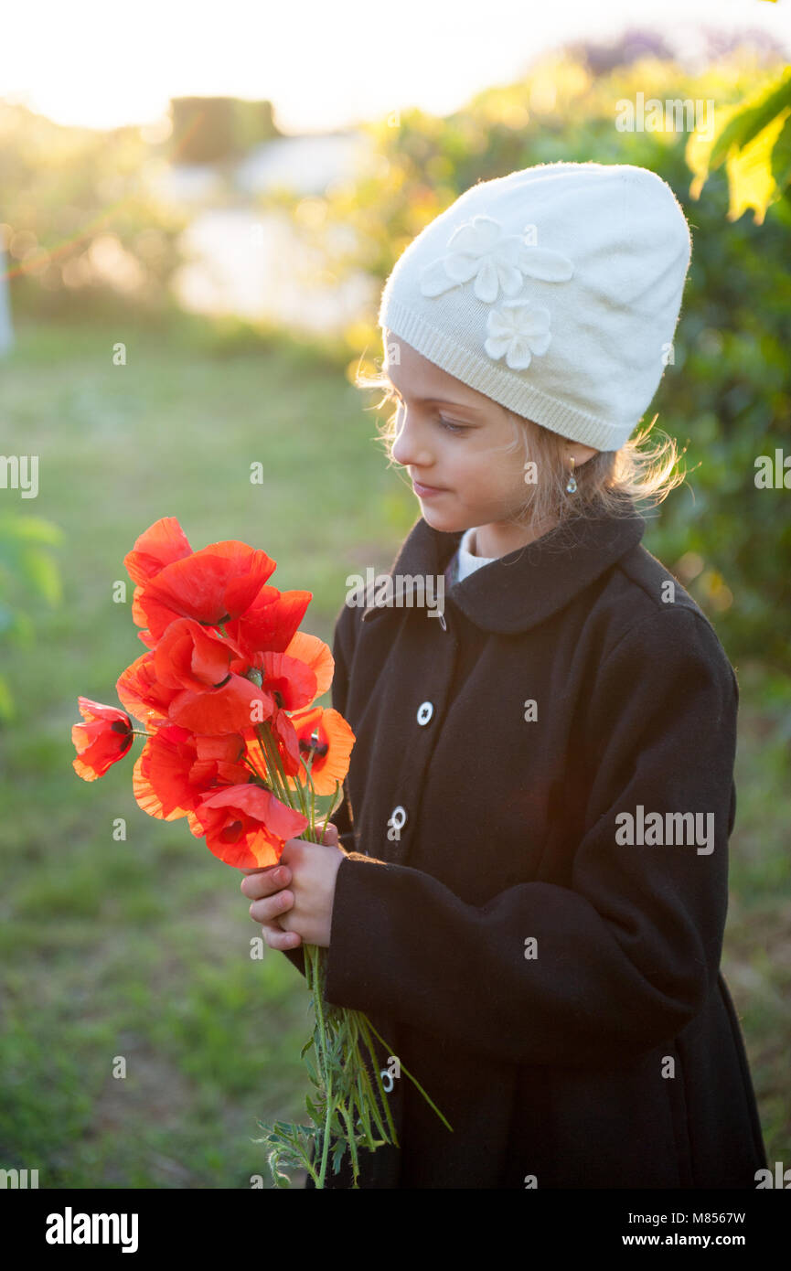 beautiful little girl with bouquet of poppies in her hands backlit by sunset light in April spring - Stock Image
