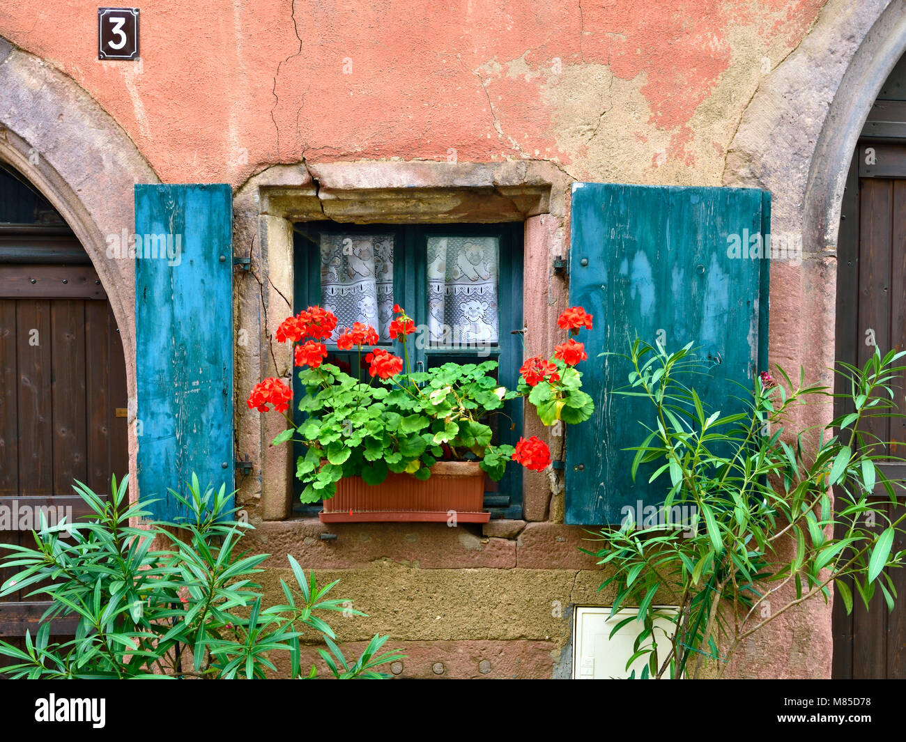 Painted shutters and a window box add a splash of colour to a medieval house in Riquewihr, Alsace, France. - Stock Image